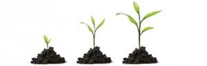 Sviluppo personale e benessere